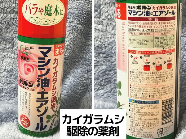 カイガラムシの殺虫剤 マシン油のエアゾール