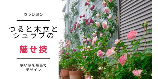 狭い庭を薔薇でデザインする。