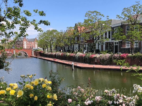 ハウステンボスのバラ運河