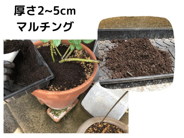 馬糞堆肥でマルチングする方法